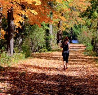 Autumn Comes to Campus