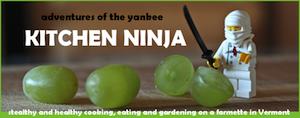 Ninja Kitchen blog
