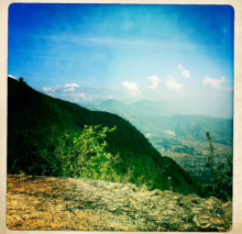 Himalayan range (Anabelle Harari '91)
