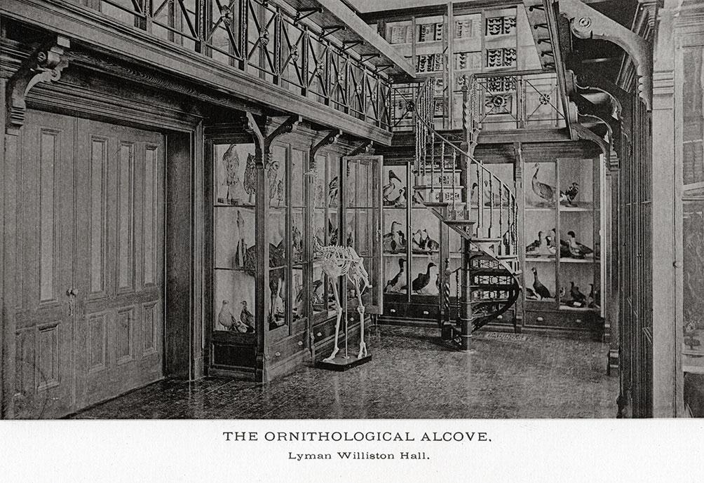 Williston Hall, 1890s