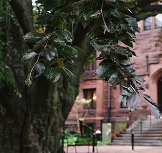 Mount Holyoke Endowment