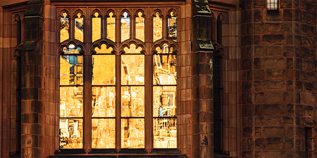 Library windows