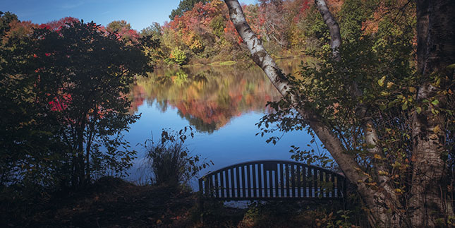 Fall foliage at Upper Lake