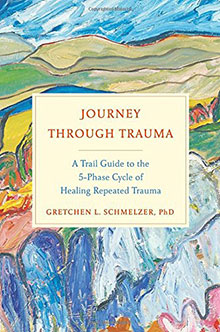 Journey Through Trauma book cover