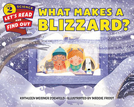 What Makes a Blizzard book cover