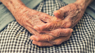 Wrinkled hands clasped in a lap