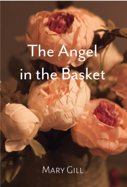 Cover of The Angel in the Basket