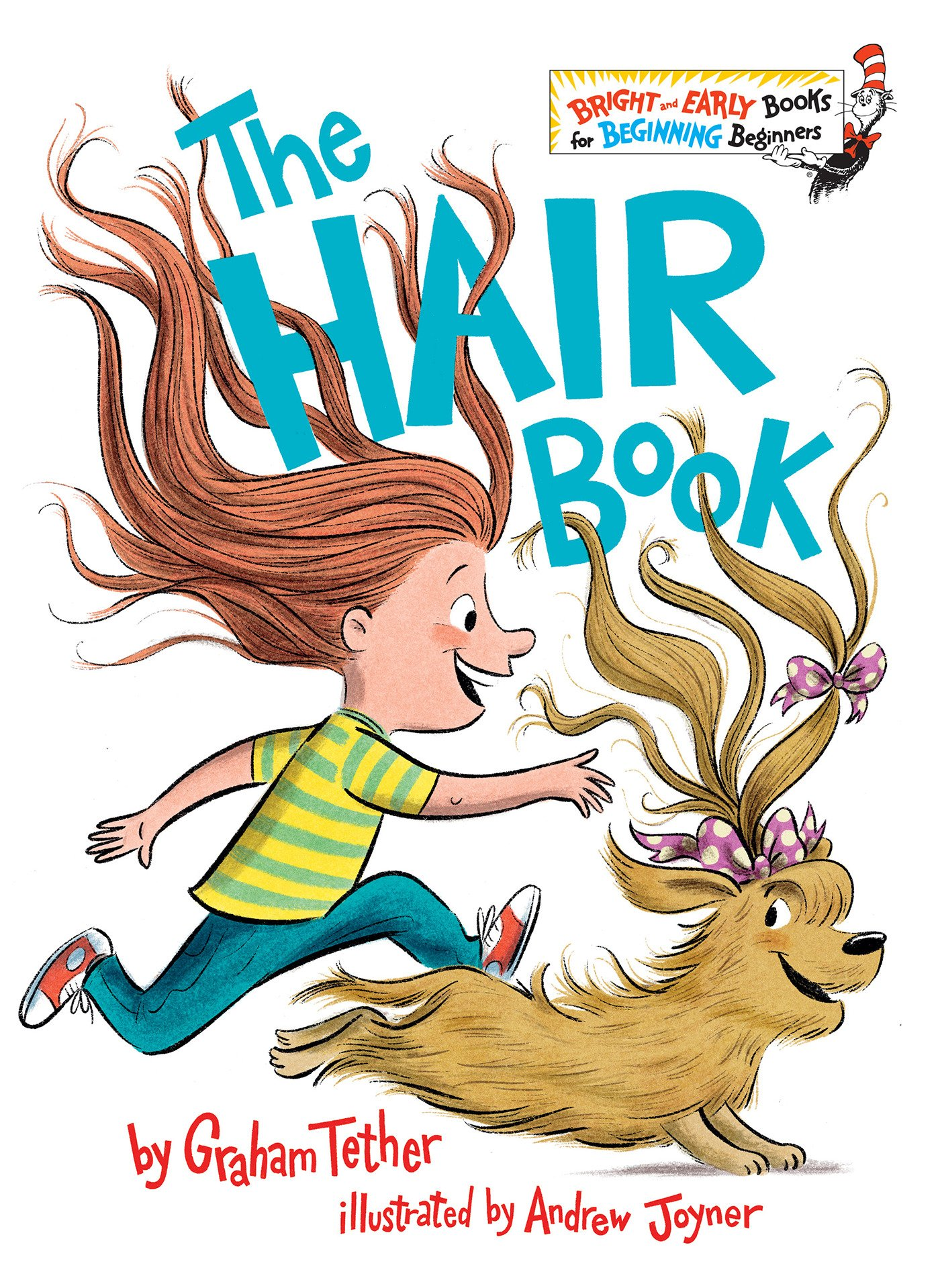 Cover of The Hair Book