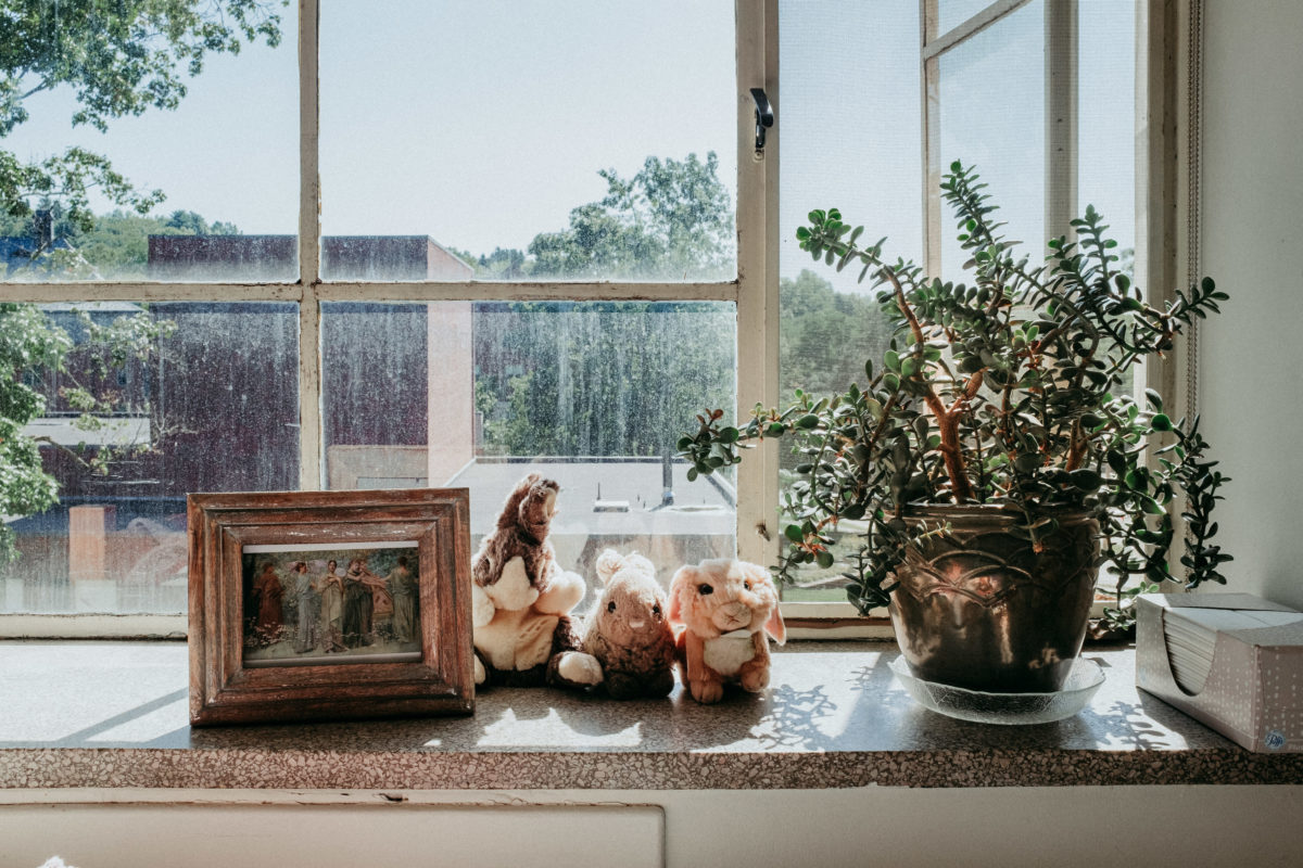 On the windowsill of a room in Buckland Hall sit a wooden picture frame, a succulent in a large metal pot and three stuffed animal bunnies. The top of Rooke Theatre can be seen from the window.